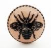 Möbelknöpfe/Porzellanknöpfe Insekt - 19